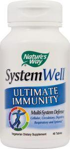 systemwell